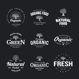 Organic natural and healthy farm fresh food retro emblem set. Olive tree vintage old logo badge isolated on dark background Stock Photography