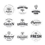 Organic natural and healthy farm fresh food retro emblem set. Olive tree vintage old logo badge isolated on white background.nPremium quality green plant Royalty Free Stock Image