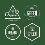 Organic natural and healthy farm fresh food retro emblem set. Monstera leaf and olive tree vintage logo badge isolated on green background. Premium quality Royalty Free Stock Photo