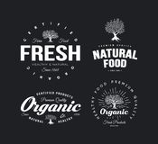 Organic natural and healthy farm fresh food retro emblem set. Vintage olive tree logo isolated on dark background. Premium quality certified vegetarian product Stock Photos