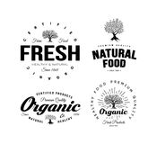 Organic natural and healthy farm fresh food retro emblem set. Vintage olive tree logo isolated on white background. Premium quality certified vegetarian Stock Image