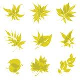 Organic natural logos Royalty Free Stock Photography