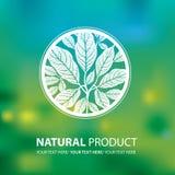 Organic natural logos Royalty Free Stock Image