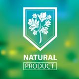 Organic natural logos Royalty Free Stock Images