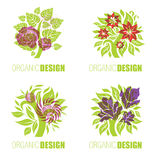 Organic natural logos Stock Photo