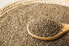 Organic natural sesame seeds Royalty Free Stock Photography