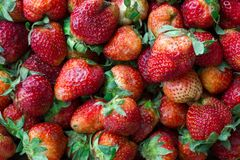 Organic natural strawberries from granny`s garden. Background, pattern royalty free stock photography