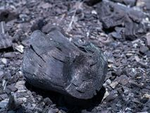 Organic natural black charcoal. wood burned. Organic natural wood charcoal. close up of black charcoal on the ground ,non smoke and odorless royalty free stock image
