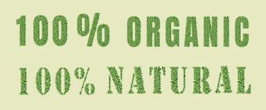 Organic nature design Stock Image