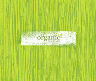 Organic Nature Friendly Eco Bamboo Background. Bio Vector Texture. Royalty Free Stock Photos