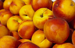 Organic Nectarines Royalty Free Stock Photos