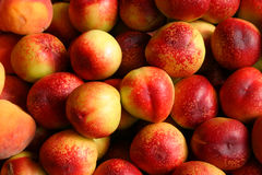 Organic Nectarines. In a market stand royalty free stock images