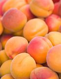 Organic Nectarines Abstract Stock Images