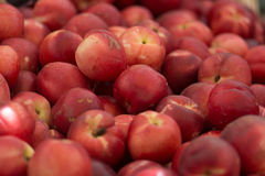 Organic Nectarines at a Farmers Market. In summer in California royalty free stock photo