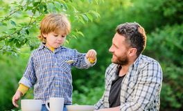 Organic nutrition. Healthy nutrition concept. Nutrition habits. Family enjoy homemade meal. Personal example. Nutrition. Kids and adults. Father teach son eat royalty free stock image