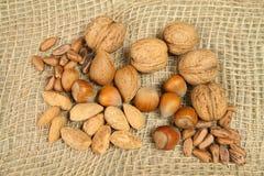 Organic nuts Royalty Free Stock Photo