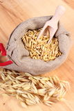 Organic oat grains in jute bag, healthy nutrition. Heap of organic oat grains with wooden spoon in jute bag, ears of oat, healthy food and nutrition Royalty Free Stock Photo