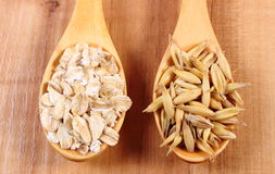Organic oat grains and oatmeal on wooden spoon, healthy nutrition Stock Images