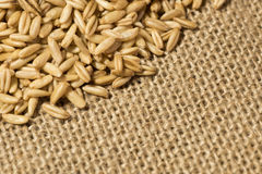 Organic oats. With burlap background stock photos