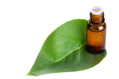 Organic oil with a green leaf Stock Image