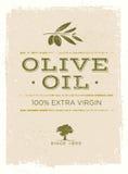 Organic Olive Oil Rough Vector Illustration on Grunge Background stock illustration