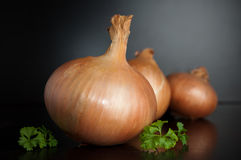 Organic onion Stock Image