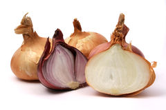 Organic onion. Isolated on white Royalty Free Stock Photos
