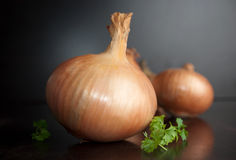 Organic onion Stock Photo