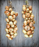 Organic onion bound together hanging on a string Stock Photo