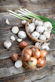 Organic onion, garlic and spring onion on table Royalty Free Stock Images