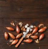 Organic  onion on wooden table Stock Photo