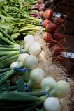 Organic Onions & Beets at Farmer's Market Stock Images