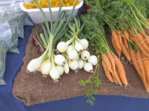 Organic Onions and Carrots Royalty Free Stock Images