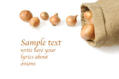 Organic onions in a jute back Royalty Free Stock Image