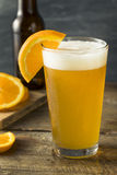 Organic Orange Citrus Craft Beer Royalty Free Stock Photo