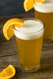 Organic Orange Citrus Craft Beer Stock Images