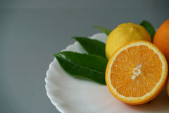 Organic orange and lemon on white plate with the gray background Royalty Free Stock Image