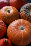 Organic orange pumpkins on wooden table, thanksgiving pumpkin background, autumn harvest Royalty Free Stock Image