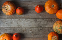 Organic orange pumpkins on wooden table, thanksgiving pumpkin background, autumn harvest Stock Photography