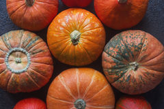 Organic orange pumpkins on wooden table, thanksgiving pumpkin background, autumn harvest Royalty Free Stock Photos