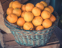 Organic Oranges In A Basket Stock Photography