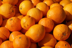 Organic oranges Royalty Free Stock Photo