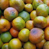 Organic oranges for sale at the market. Stock Image