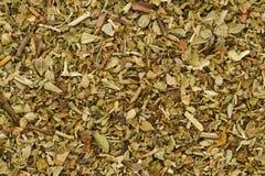 Organic Oregano. Oregano (origanum vulgare). Can be used as a background stock images