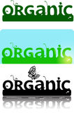 Organic ornate logotype text Stock Photos