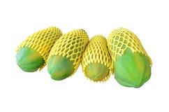 Organic papaya (Carica papaya L). Royalty Free Stock Photos