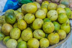 Organic Passion fruit Passiflora edulis for sale at the local market in Thailand. Passiflora edulis also known as passion fruit Stock Images