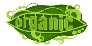 Organic Pea Pod Royalty Free Stock Photography