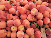 Organic Peaches. Detail of Organic Orchard Peaches at Farmers Market Stock Image