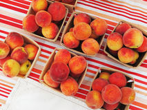 Organic peaches for sale at market. Royalty Free Stock Photo
